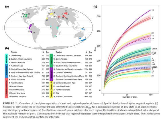 Poznaliśmy globalne wzorce bogactwa gatunkowego roślin naczyniowych wpiętrze alpejskim